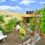 TropicalLaZona-GranCanariaGayStay-Gardens (5)