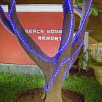beachboysresort-grancanariagaystay-gardens (10)