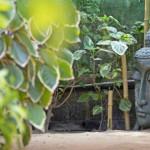 beachboysresort-grancanariagaystay-gardens (5)