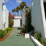 GayTenesoya-GranCanariaGayStay-gardens(12)