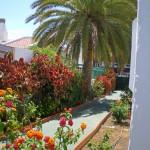 GayTenesoya-GranCanariaGayStay-gardens(14)