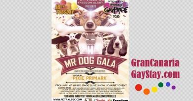 10May Maspalomas Gay Pride 2016- GranCanariaGayStay-4