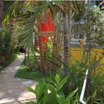 PasiónTropical-gardens-GranCanariaGayStay (1)