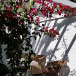 Villa Eden-GranCanariaGayStay (20)