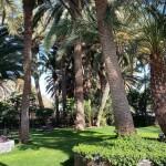 Villa Eden-GranCanariaGayStay (23)