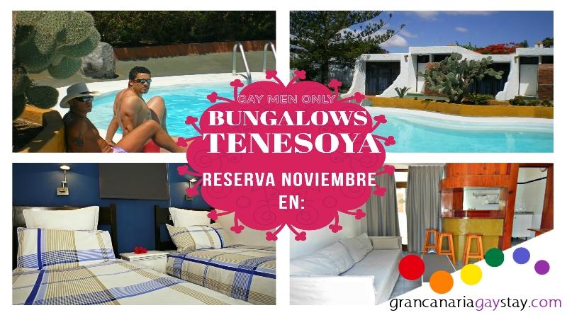 Tenesoya-Gran Canaria Gay Stay- es